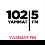 01_Yammat